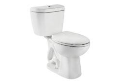 Niagara dual-flush toilet