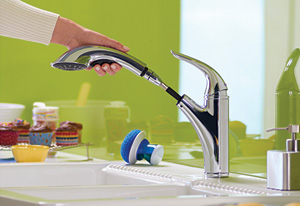 Danze pull-out faucet