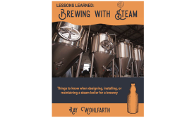 Brewing with steam