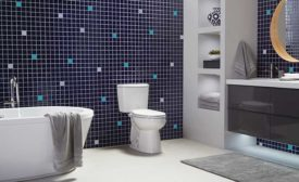 Toilets can be trendy and save water at the same time